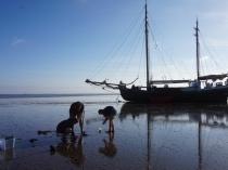 2018 Kirsch Meeresökologie Foto 2
